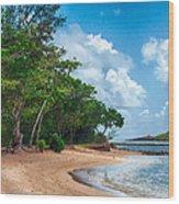 Secret Island Beach Wood Print