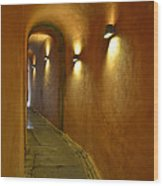 Secret Passageway In Lyon France Wood Print