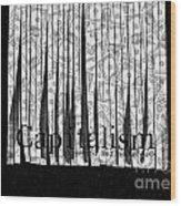 Secrets Behind The Veil Of Crony Capitalism Wood Print