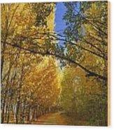 Autumn Secrets Wood Print