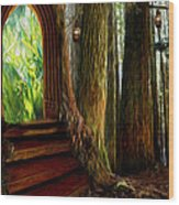 Secrets Of The Forest Wood Print