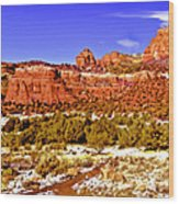 Sedona Arizona Secret Mountain Wilderness Wood Print