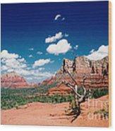 Sedona Desert Scene Wood Print