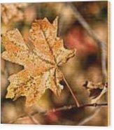Sedona Leaf 14 Wood Print