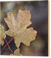 Sedona Leaf 19 Wood Print