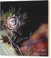 Sedona's Desert Rose Wood Print