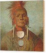 See Non Ty A An Iowa Medicine Man Wood Print