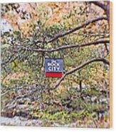 See Rock City Wood Print