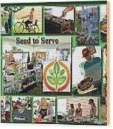 Seed To Serve Rw2k14 Wood Print