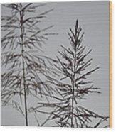 Seed Tops Wood Print