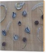Seedpods Wood Print