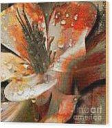 Seeds Wood Print by Yanni Theodorou