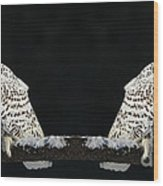 Seeing Double- Snowy Owl At Twilight Wood Print