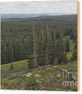 Seeing Forever - Yellowstone Wood Print