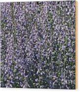 Seeing Lavender Wood Print