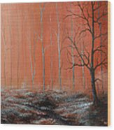 Seeing Shades Of Red Wood Print