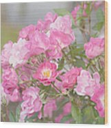 Seek Beauty Wood Print