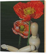 Seeking A Yellow Brick Road Poppy Number Two Wood Print