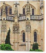 Segovia Cathedral Wood Print
