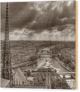 Seine From Notre Dame Wood Print