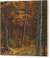 Seldom Used Wood Print