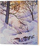 Seldovia Ravine Wood Print