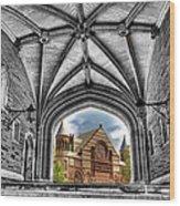 selective colors Princeton University Wood Print