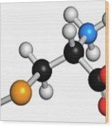 Selenocysteine Amino Acid Molecule Wood Print
