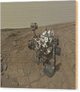 Self-portrait Of Curiosity Rover Wood Print