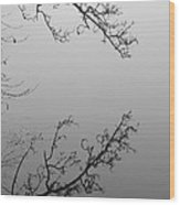 Self-reflection Wood Print