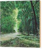 Sendero Del Parque Wood Print
