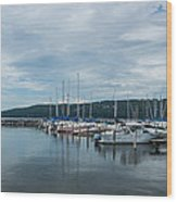 Seneca Lake Harbor - Watkins Glen - Wide Angle Wood Print