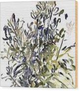 Senecio And Other Plants Wood Print