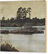 Seney Au Lait Wood Print