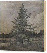 Seney Latte Wood Print