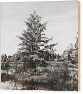 Seney Silver And Chocolate Wood Print