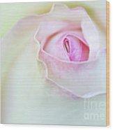 Sensual Rose Wood Print