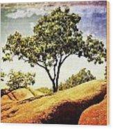 Sentinal Tree Wood Print