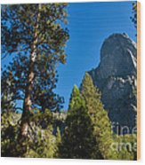 Sentinel Dome, Yosemite Np Wood Print