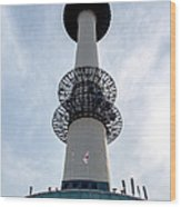 Seoul Tower Wood Print