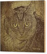 Sepia Cat Wood Print