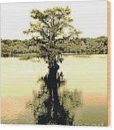 Sepia Cypress Chicot Sp Louisiana Wood Print
