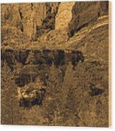 Sepia Red Rock Sedona Wood Print