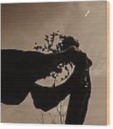 Sepia Wood Print