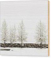 Sepia Tree Wood Print