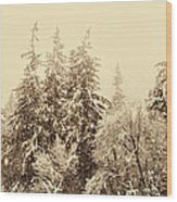 Sepia Winter Landscape Wood Print