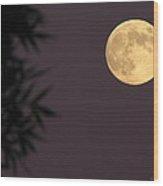 September 18 2013  Harvest Moon Wood Print