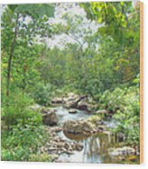 September Arrives At The Unami Creek Wood Print