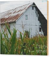 September Corn Barn Wood Print