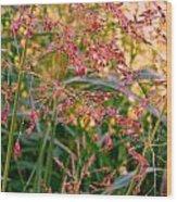 September Grasses Wood Print
